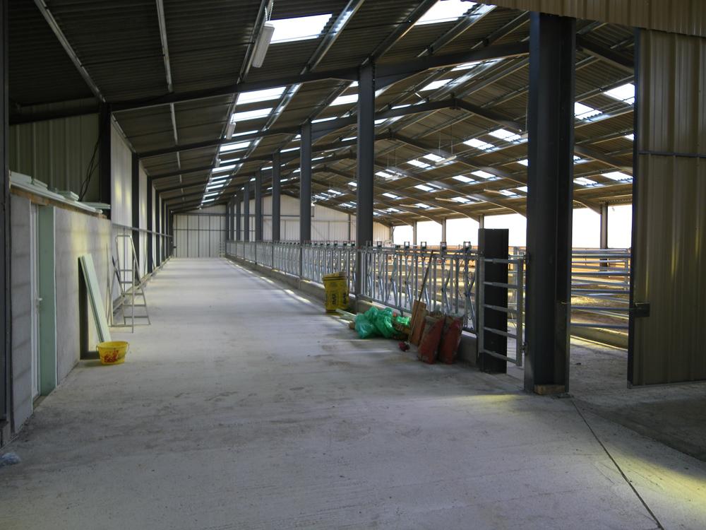 prix batiment agricole construction de batiment agricole prix m2 hangar avec bardage bois et. Black Bedroom Furniture Sets. Home Design Ideas